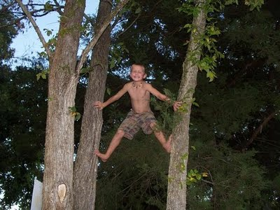 Youth Training Tree Climb